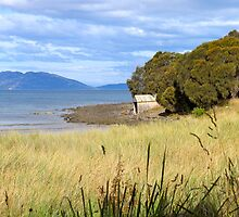 A view from our Cottage... Tasmania, Australia by Ali Brown