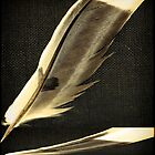 The Feather Book by kilmann
