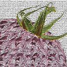 Hot Purple Tomato by DawnCooke