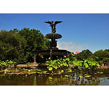 Bethesda Terrace Fountain - Central Park, NYC Photographic Print