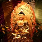 Buddha Statue by Fo Guang Shan @ Chinese pre-New Year Festival, Australia by YangsCreation