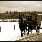 Young Amish Girls in Horse and Buggy by Diane Blastorah