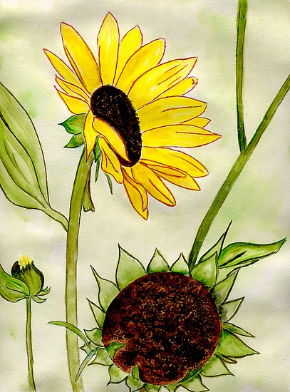 Warm Sunny Flowers by Anne Gitto
