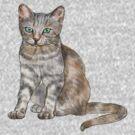Kitten by Sharon Stevens
