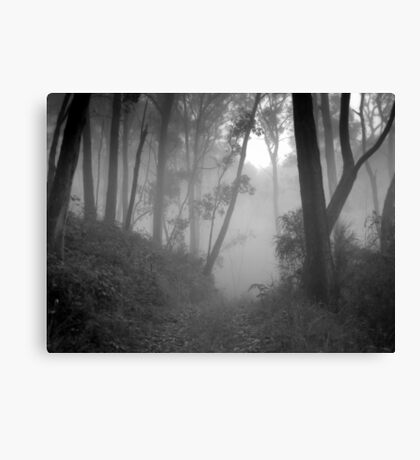 Is This the Way to Grandma's House? Canvas Print