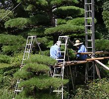 Pruning Trees Tennoji Gardens Osaka Japan by RossHeywood
