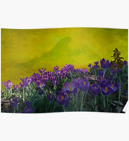 Spring in Washington State Poster