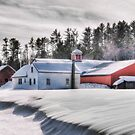 Drifting Snow by Bruce Taylor