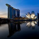 Marina Bay Sands Hotel, Singapore by damienlee