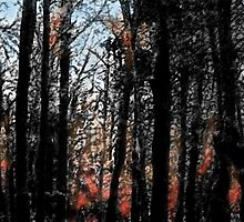 Fire Through a Forest of Dreams by Trevor Pearson