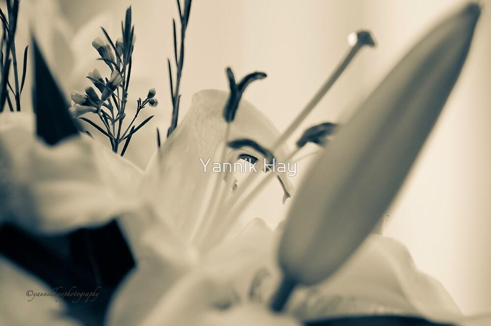 I Love Lilies by Yannik Hay