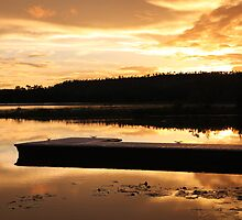 Scenic Sunset by Michelle Munday