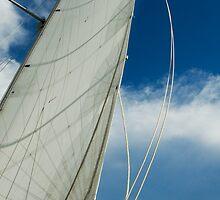 0053  187 Indigo - The Sail by Hazel Hogarth