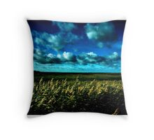 Winter at Salthouse Marsh Throw Pillow