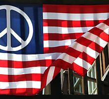 Peace Flag by Denice Breaux