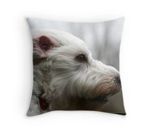my dog at 40mph Throw Pillow
