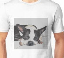 Aw-shucks Unisex T-Shirt
