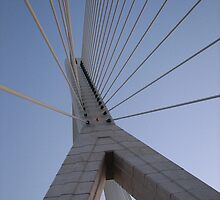 Flintshire Bridge, North Wales by mftaylor2000