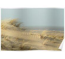 Dunes near Burnham Overy Staithe Poster