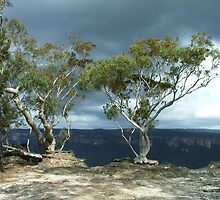 Trees on the edge of the world by orkology