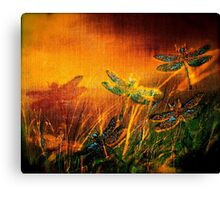Dragonfly...Towards The Light  Canvas Print