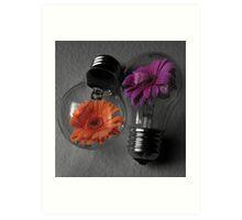 Flowering bulbs Art Print
