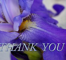 iris thank you by dedmanshootn