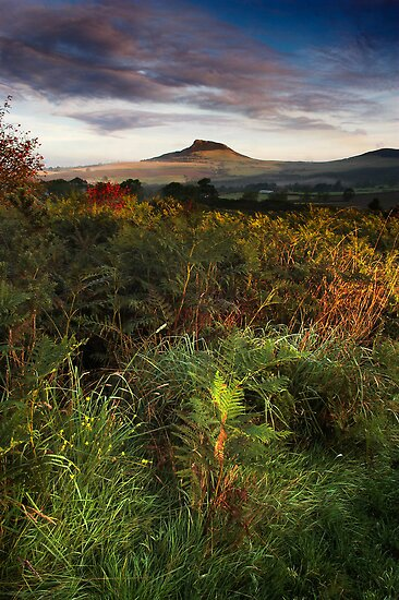 Roseberry Topping by Dave Hudspeth