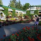 The Italian Garden at Butchart's (1) by George Cousins