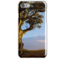 Durability and Strength, Wilpena, South Australia. Study #5 iPhone Case/Skin