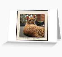 Do You Mind! Greeting Card