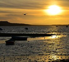 Mudeford 1 by Richard Hepworth