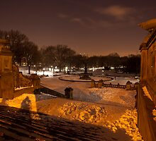 Bethesda Fountain by Sam Tabone