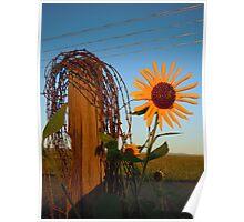Wires - Castle Rock, Colorado Poster