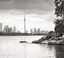 View from Humber Bay by Steve Silverman