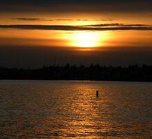 Kirkland Sunset by tmtphotography