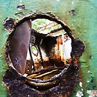 Homebush Bay Shipwrecks - Mangrove Wreck Port Hole by DashTravels