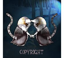 Copyright and The Copycat Photographic Print