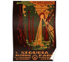 Sequoia National Park Poster Poster