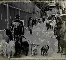 Dog Walker by JodieT