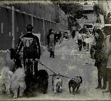 Dog Walker by JodieT