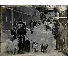 Dog Walker Photographic Print