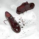 Snow Shoes by Danielle  La Valle
