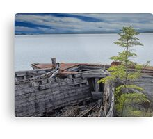 Shipwrecks at Neys Provincial Park Metal Print