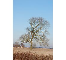 Lincolnshire View Photographic Print