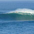 Waimea Bay Whale Watcher by kevin smith  skystudiohawaii