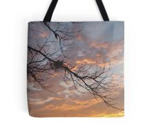 FEBRUARY:  GUM TREE BRANCH AT SUNSET Tote Bag