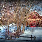 Rustic Winter Barn by Monica M. Scanlan