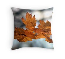 Fabulous Autumn Throw Pillow