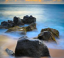 Hawaii Dreaming by Inge Johnsson